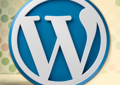 Prace graficzne/informatyczne WordPress